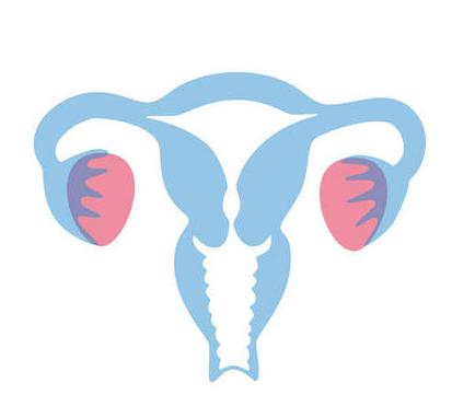 宫颈癌是最常见的妇科恶性肿瘤。原位癌高发年龄为30~35岁,浸润癌为45~55岁,近年来其发病有年轻化的趋势。