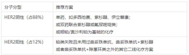 FireShot Capture 520 - 国内胃癌药物:新药不多,传统化疗药地位稳固 - mp.weixin.qq.com.png