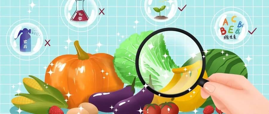 蔬菜1.webp.jpg