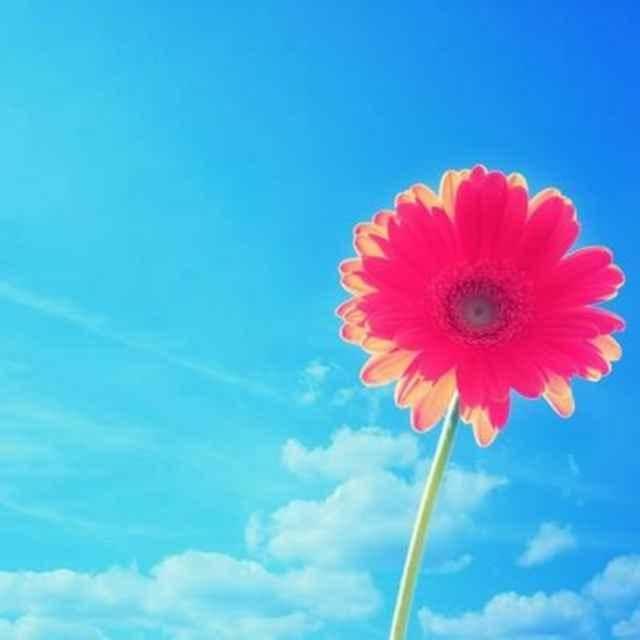 春暖花开8222