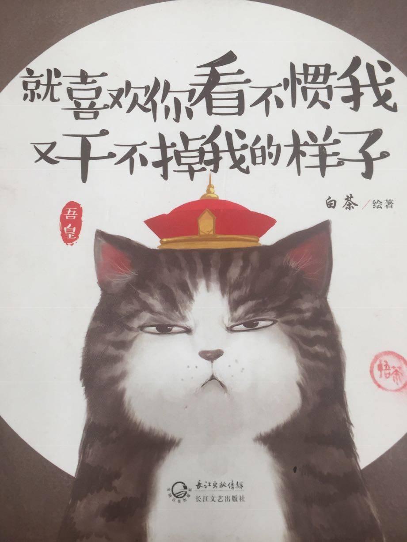 A站前悟茶~晶晶韩妆