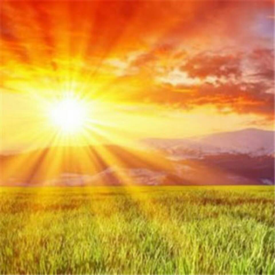 心朝阳光一路向前