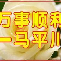 觅友_J93346O16