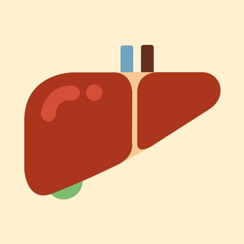 肝癌是指发生于肝脏的恶性肿瘤,包括原发性肝癌和转移性肝癌两种,人们日常说的肝癌指的多是原发性肝癌。原发性肝癌是临床上最常见的恶性肿瘤之一原发性肝癌按细胞分型可分为肝细胞型肝癌、胆管细胞型肝癌及混合型肝癌。